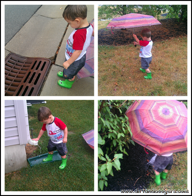 Rain collage
