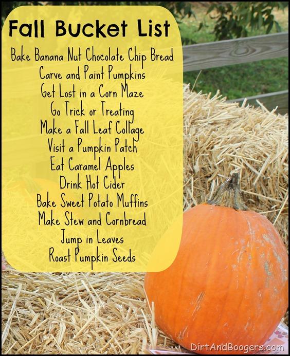 Fall Bucket List, pumpkins,