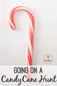 A fun Christmas activity that the whole family will enjoy! Let's go on a Candy Cane Hunt!