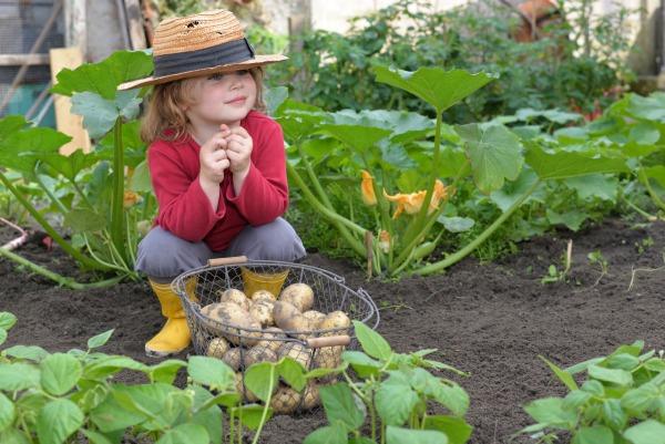 gardening with kids, growing a garden,