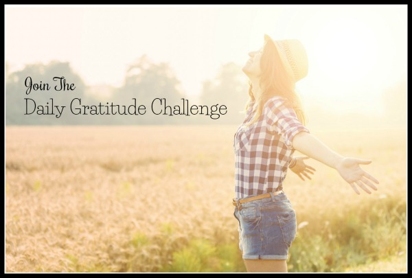 join the daily gratitude challenge - border