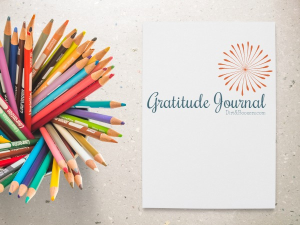 Gratitude Journal with Pencils