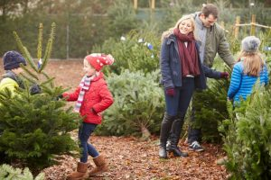 How to Take The Chaos Out of Christmas